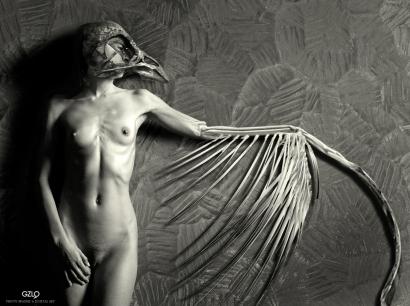 Winged Morph by Gonzalo Villar