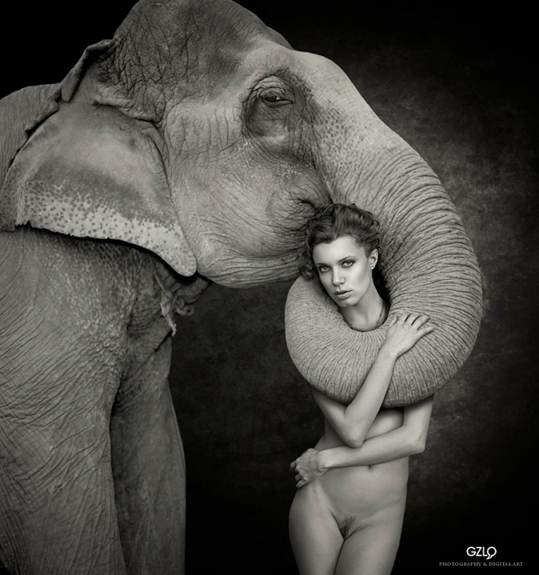 Chucha&Elephant900