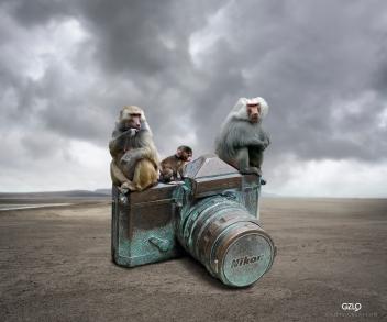 Ref: GZLo – 195. Nikon. 30cm x 25cm - Photocreation: Gonzalo Villar